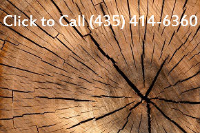 Tree Removal Company St. George UT